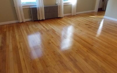 Newly Refinished Maple Hardwood Floors