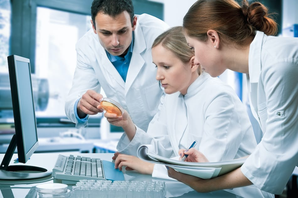 picture of Group of medical research scientists working at the laboratory