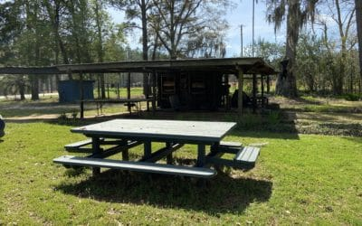 Picnic Table and Car Port