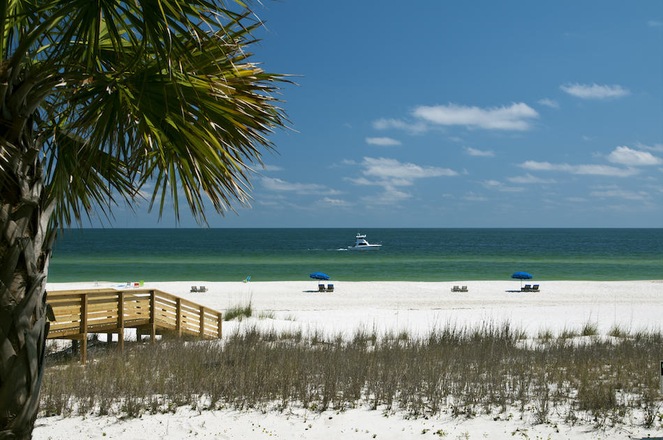 picture of The white sand beach of the Gulf Coast.