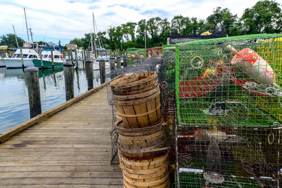 picture of blue crab traps in Maryland
