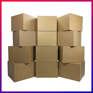 picture of the best large moving box 1