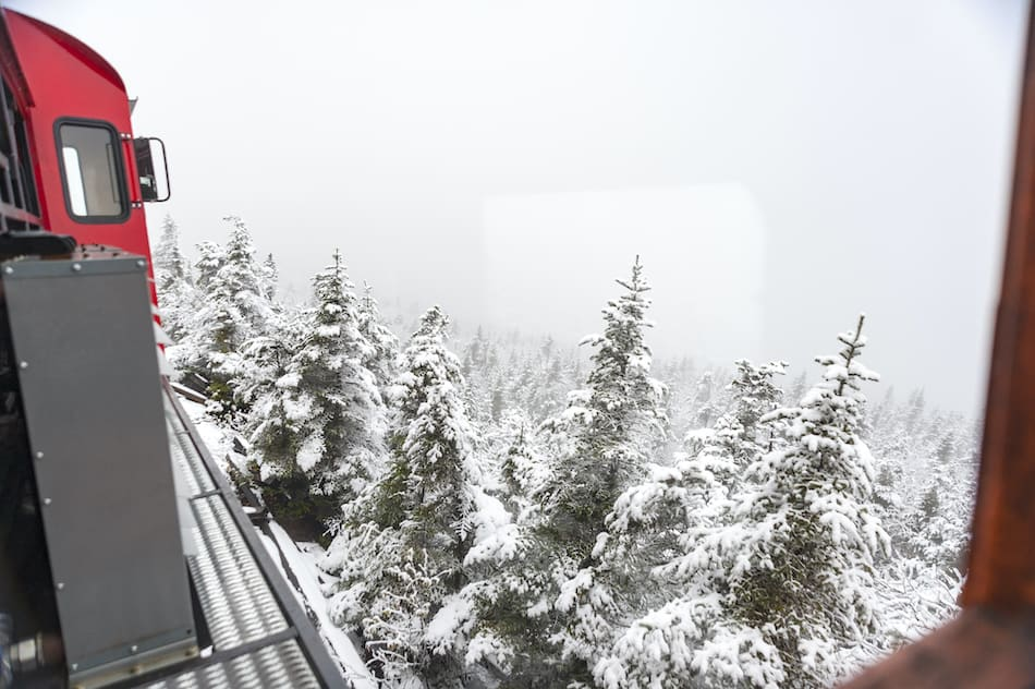 First snow of season covers pine trees along Cog Railway on Mount Washington