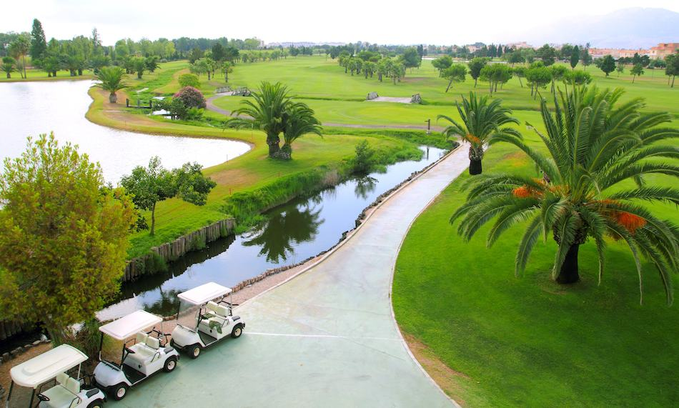 Golf course lakes palm trees green grass aerial view