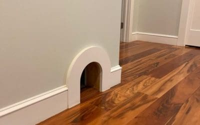 cat entrance to litter